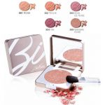 BIONIKE Defence Color Pretty Touch Compact Blusher.jpg